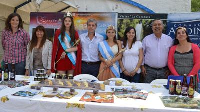 comarca andina