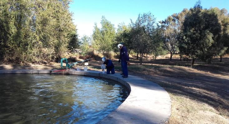 Aluar muestra como utiliza agua de reuso